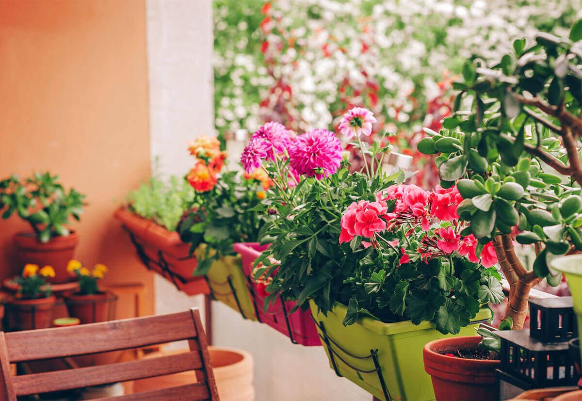 Mit frisch eingetopften Blumen und Kräuter auf dem Balkon wird der Outdoor-Bereich im Frühling und Sommer zum Lieblingsplatz.